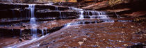 Stream flowing through rocks, North Creek, Zion National Park, Utah, USA von Panoramic Images
