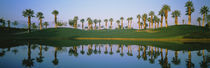 Golf Course Marriot's Palms AZ USA von Panoramic Images