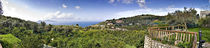 Town on a hillside, Massa Lubrense, Capri, Naples, Campania, Italy by Panoramic Images