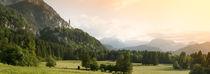 Castle on a hill, Neuschwanstein Castle, Schwangau, Bavaria, Germany von Panoramic Images