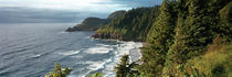 High angle view of a coastline, Heceta Head Lighthouse, Oregon, USA by Panoramic Images