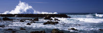 Rock formations at the sea, Three Tables, North Shore, Oahu, Hawaii, USA von Panoramic Images