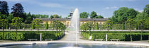Fountain in a garden, Potsdam, Germany von Panoramic Images