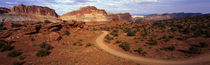 Desert Road, Utah, USA von Panoramic Images