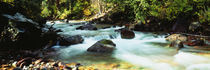Mountain Stream CO USA von Panoramic Images