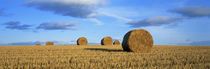 Hay Bales, Scotland, United Kingdom by Panoramic Images