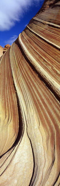 The Wave, Navajo Sandstone Formation, Vermilion Cliffs Wilderness, Arizona, USA von Panoramic Images