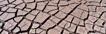 Close-up of cracked mud, South Dakota, USA by Panoramic Images