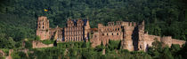 Castle on a hillside, Heidelberg, Baden-Wurttemberg, Germany by Panoramic Images