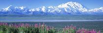 Mountains & Lake Denali National Park AK USA von Panoramic Images
