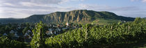 Houses in a town in front of a mountain, Ebernburg, Nahe, Germany by Panoramic Images