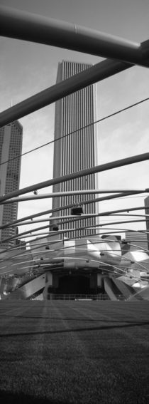 Millennium Park, Chicago, Illinois, USA by Panoramic Images