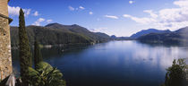 Plants at the lakeside, Lake Lugano, Lugano, Ticino, Switzerland by Panoramic Images