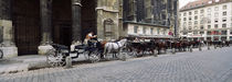 Horsedrawn carriages at a town square, Stephansplatz, Vienna, Austria von Panoramic Images