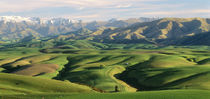 Farmland S Canterbury New Zealand von Panoramic Images