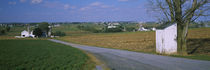 Road passing through a field, Amish Farms, Lancaster County, Pennsylvania, USA by Panoramic Images