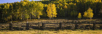 San Miguel County, Colorado, USA by Panoramic Images