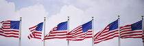 Low angle view of American flags fluttering in wind von Panoramic Images
