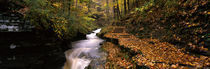 Buttermilk Creek, Ithaca, New York State, USA von Panoramic Images