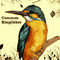 Kingfisher-decor-texture-text
