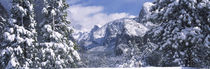 El Capitan, Half Dome, Bridal Veil, Yosemite National Park, California, USA von Panoramic Images