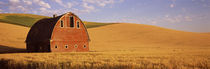 Old barn in a wheat field, Palouse, Whitman County, Washington State, USA by Panoramic Images