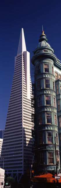 Transamerica Pyramid, San Francisco, California, USA by Panoramic Images