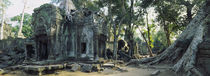 Old ruins of a building, Angkor Wat, Cambodia by Panoramic Images
