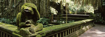 Ubud Monkey Forest, Ubud, Bali, Indonesia by Panoramic Images