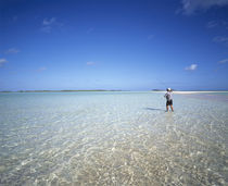 Rear view of a man fishing in the ocean, Tuamotu Archipelago, French Polynesia by Panoramic Images