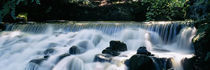 Waterfall in a forest, Aberfeldy Birks, Perthshire, Scotland by Panoramic Images