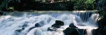 Panorama Print - Wasserfall, Aberfeldy Birks, Perthshire, Schottland von Panoramic Images