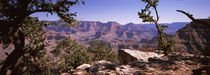 South Rim, Grand Canyon National Park, Arizona, USA by Panoramic Images