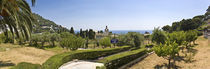 Trees in a formal garden, Gardens of Augustus, Capri, Naples, Campania, Italy von Panoramic Images
