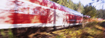 Red commuter train passing through a forest, Baden-Württemberg, Germany von Panoramic Images