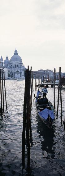 Santa Maria Della Salute, Venice, Veneto, Italy von Panoramic Images