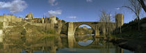 Tagus River, Toledo, Castilla La Mancha, Toledo province, Spain by Panoramic Images
