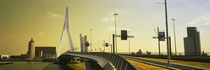 Bridge across the river, Erasmus Bridge, Rotterdam, Netherlands by Panoramic Images
