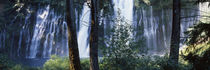 Waterfall, McArthur-Burney Falls Memorial State Park, California, USA von Panoramic Images