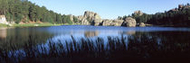 Black Hills, Custer State Park, Custer County, South Dakota, USA by Panoramic Images