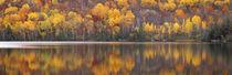 Laurentide Quebec Canada von Panoramic Images