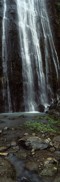 Waterfall, Barranco del Infierno, Canary Islands, Spain von Panoramic Images