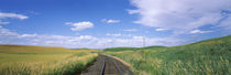 Railroad track passing through a field, Whitman County, Washington State, USA von Panoramic Images