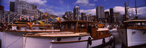 Old boats at a harbor, Seattle, King County, Washington State, USA by Panoramic Images