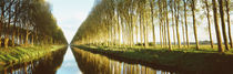 Belgium, tree lined waterway through countryside von Panoramic Images