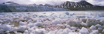 Ice floes in the sea with a glacier in the background, Norway von Panoramic Images