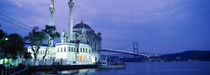Ortakoy Mosque, Istanbul, Turkey by Panoramic Images
