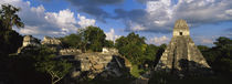 Ruins Of An Old Temple, Tikal, Guatemala by Panoramic Images