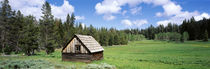 Log cabin in a field, Klamath National Forest, California, USA by Panoramic Images