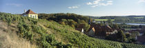 Diesbar-Seublitz, Sachsen, Germany von Panoramic Images